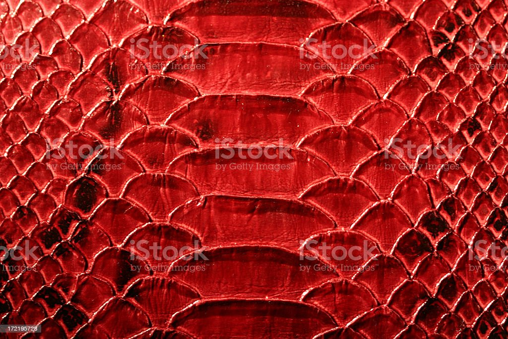 Red Snakeskin wide stock photo