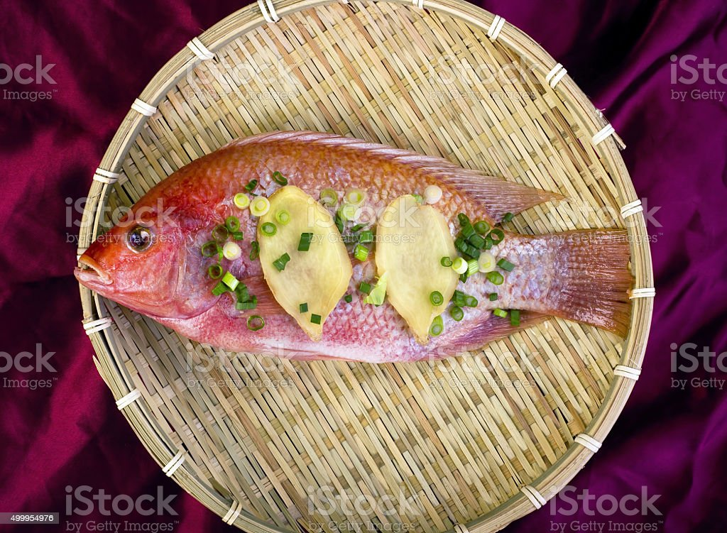 Red Snapper. stock photo
