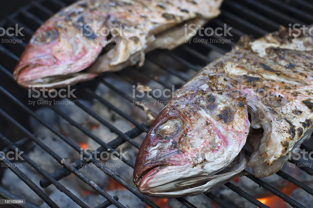 red snappers on the grill stock photo