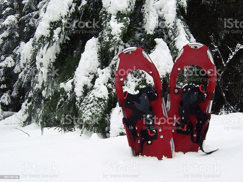 Red Snowshoes 2 royalty-free stock photo