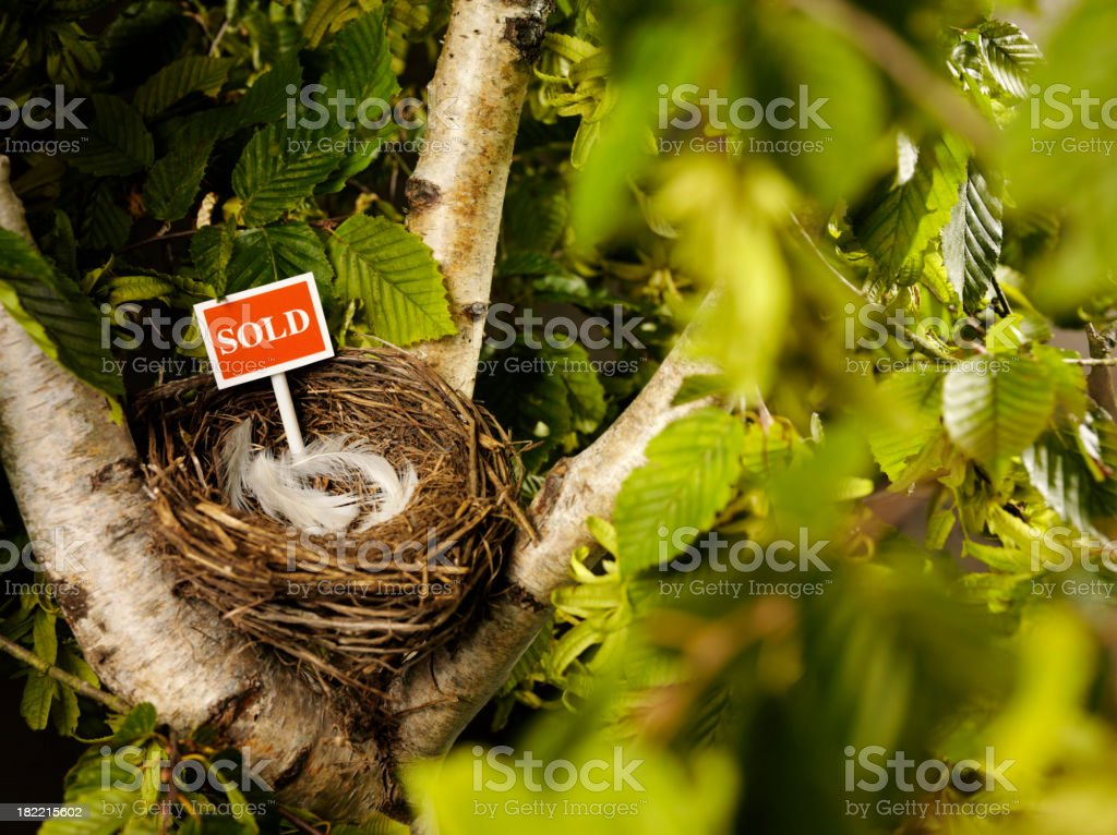 Red Sold Sign in a Tree royalty-free stock photo