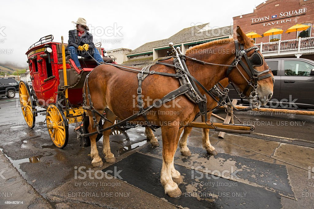 Red stagecoach and driver waiting in street, Jackson, Wyoming. stock photo