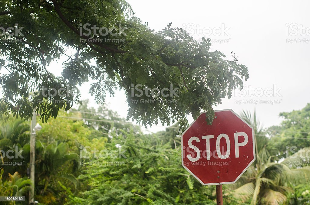 red stop sign among lush green bush concept stock photo
