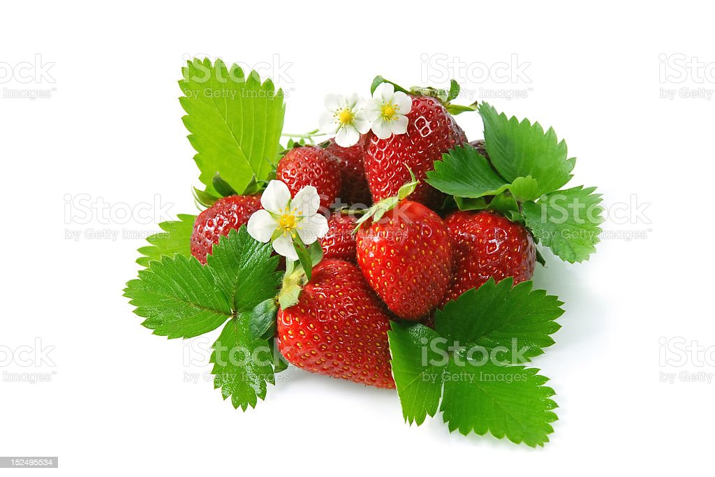 red strawberries royalty-free stock photo