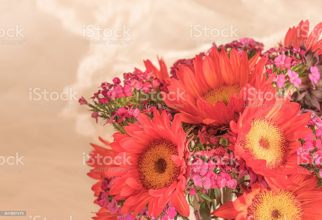 Red Sunflower bouquet and Vintage Wedding dress close up (P) stock photo