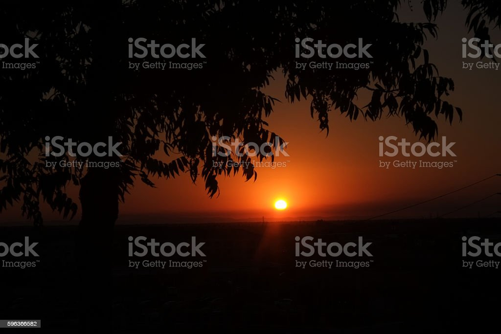 Red Sunset in Folsom California with Tree in Foreground stock photo