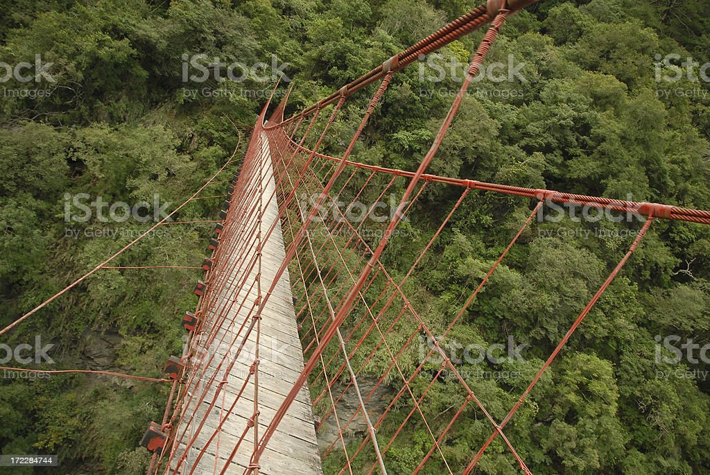 Red Suspension Bridge and Forest royalty-free stock photo