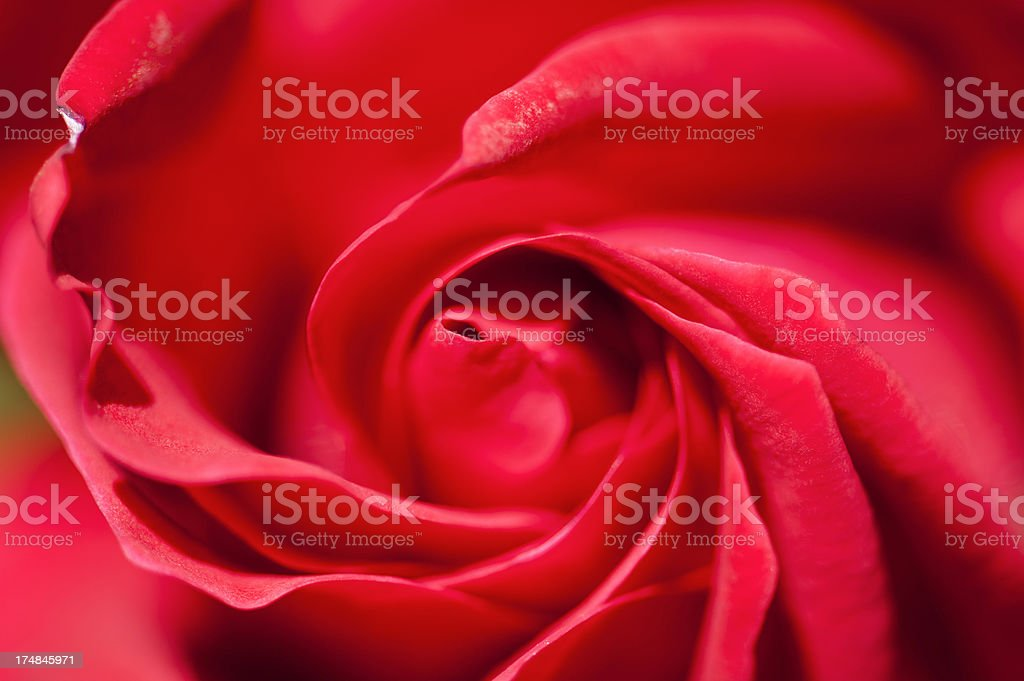 Red Swirl royalty-free stock photo