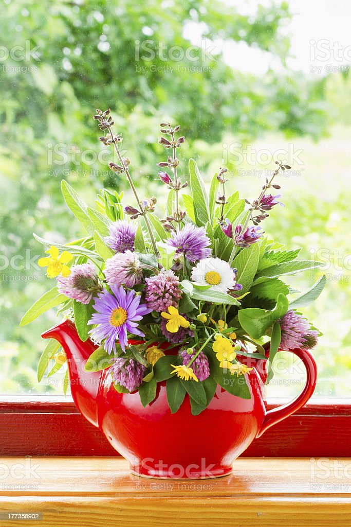 red teapot with bouquet of healing herbs and flowers royalty-free stock photo