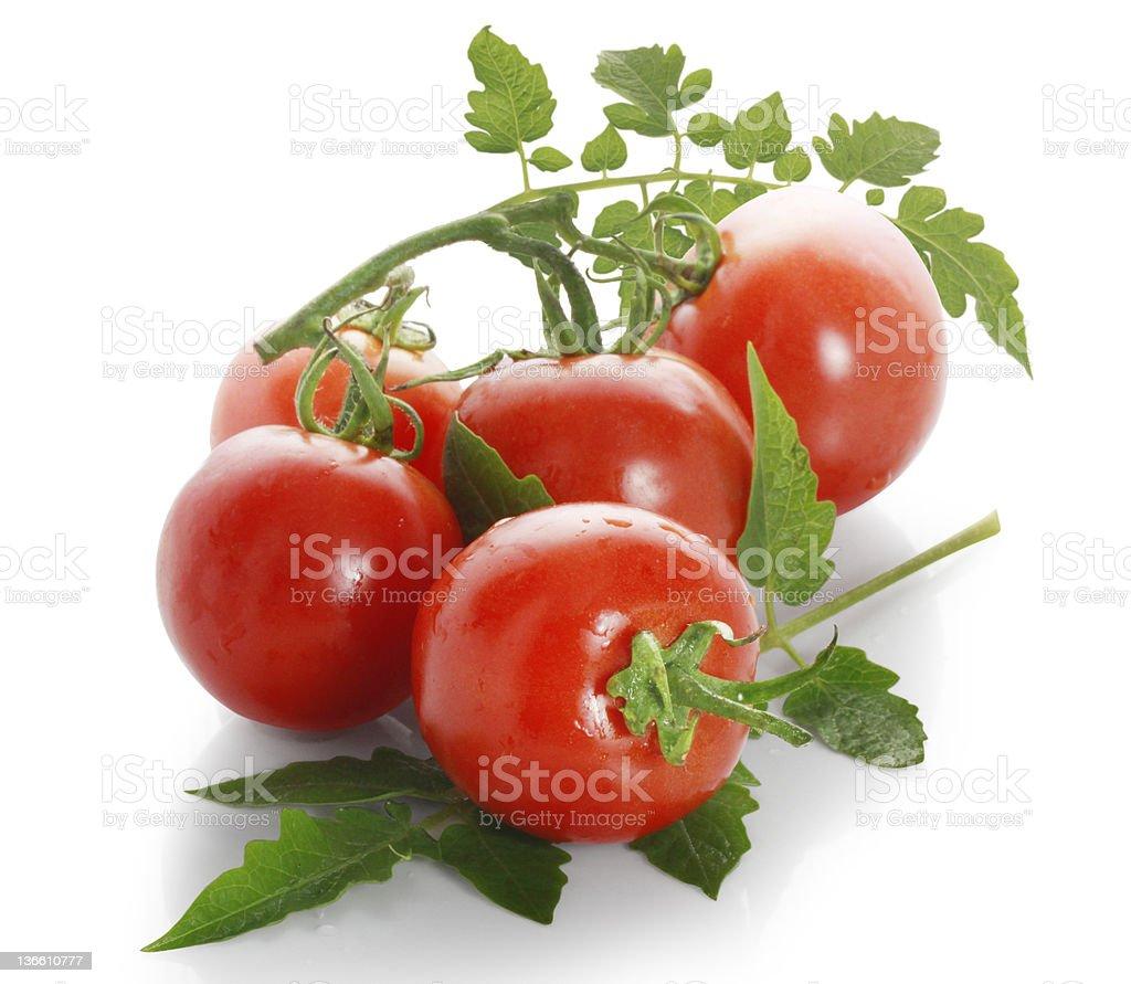 red tomato stock photo