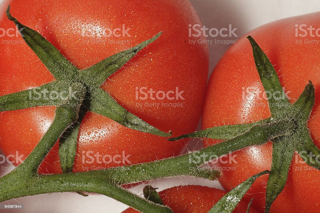 Red Tomato with stem stock photo