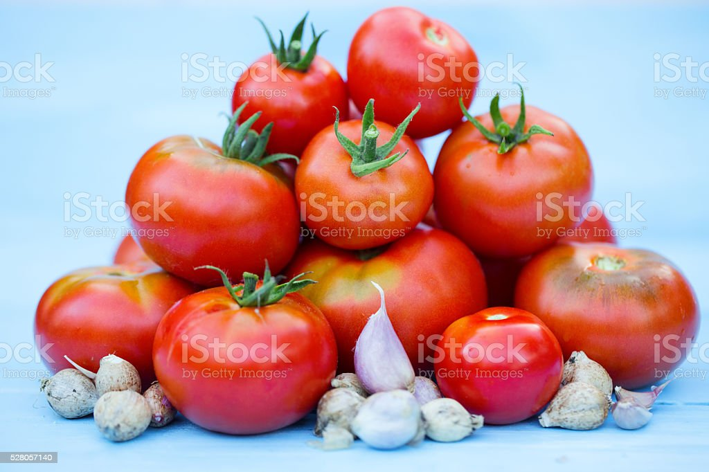 Red tomatoes and garlic. stock photo