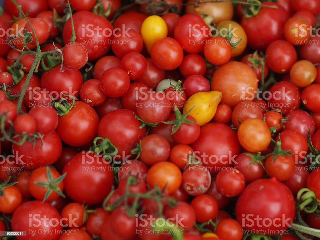 red tomatoes background stock photo