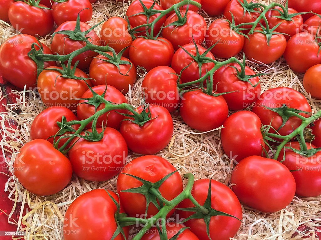 Red tomatoes for sale stock photo