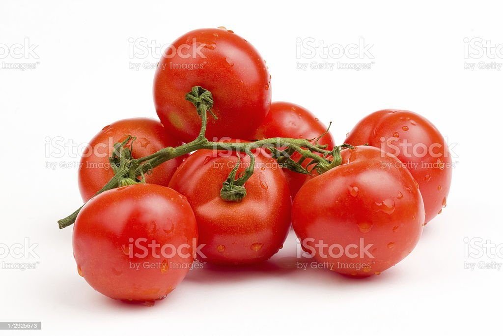 Red tomatoes still on the vine royalty-free stock photo