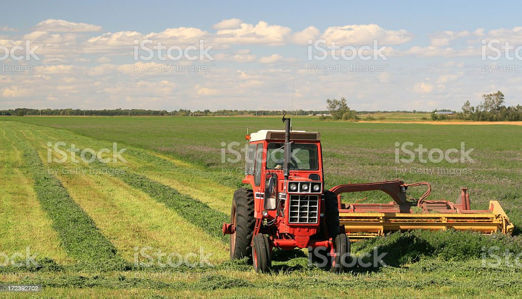 Red Tractor Harvesting Alfalfa on the Great Plains royalty-free stock photo