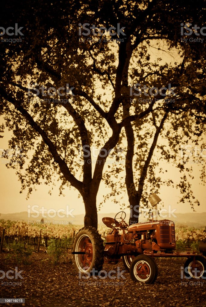 red tractor in napa valley stock photo
