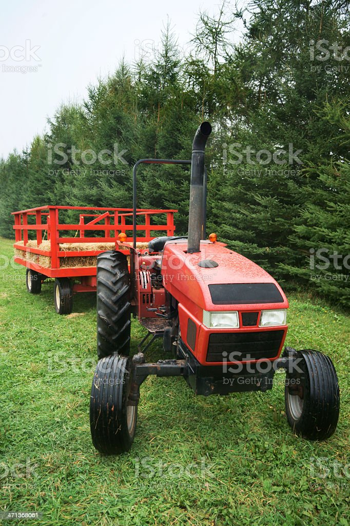 Red tractor with trailer and hay. stock photo