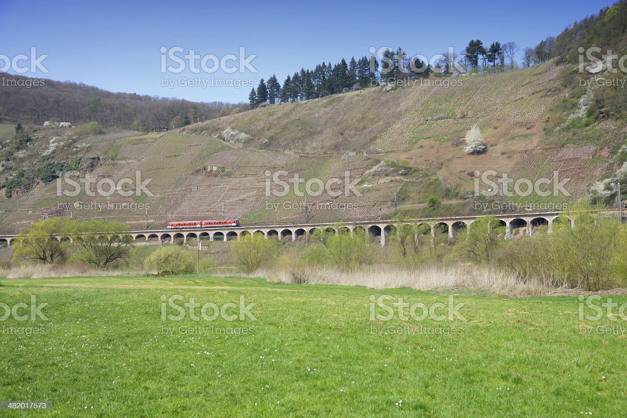 Red train on Viaduct drives through vineyards royalty-free stock photo