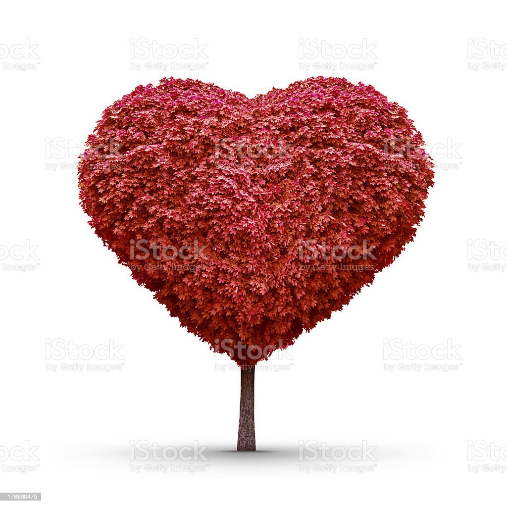Red tree of love stock photo