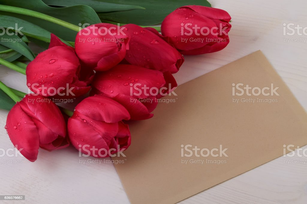 Red tulips and paper sheet stock photo