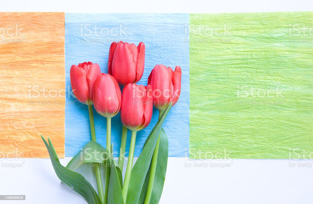 red tulips on art deco squares royalty-free stock photo