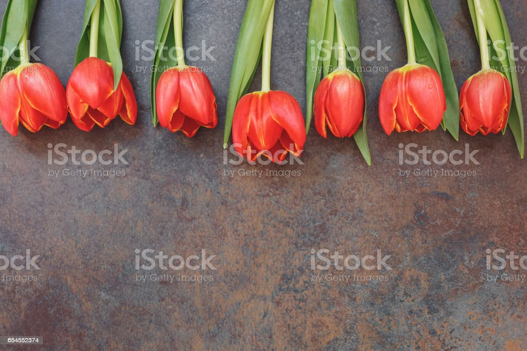 Red Tulips over stone background border stock photo