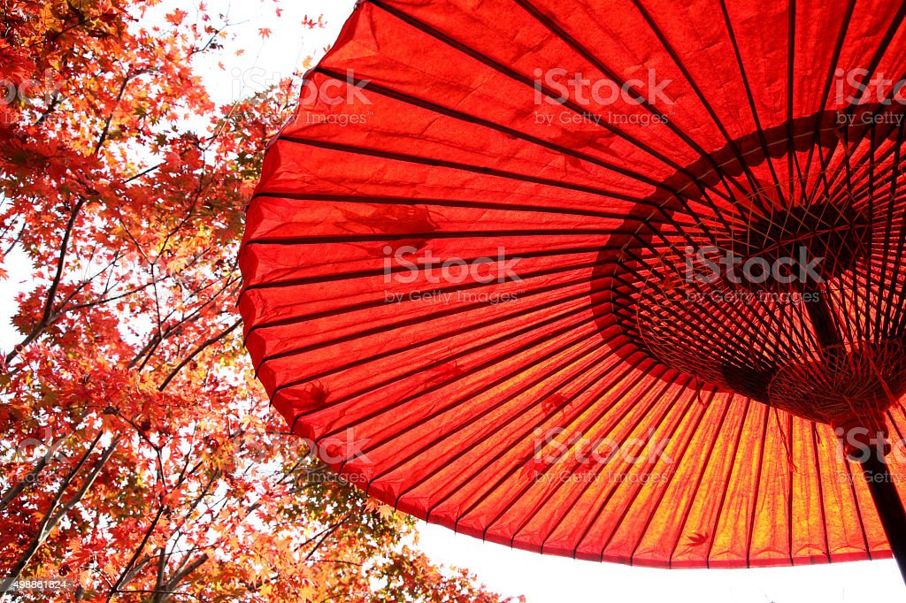 red umbrella with autumn tree stock photo