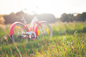 Red vintage bicycle in a meadow on a sunny day