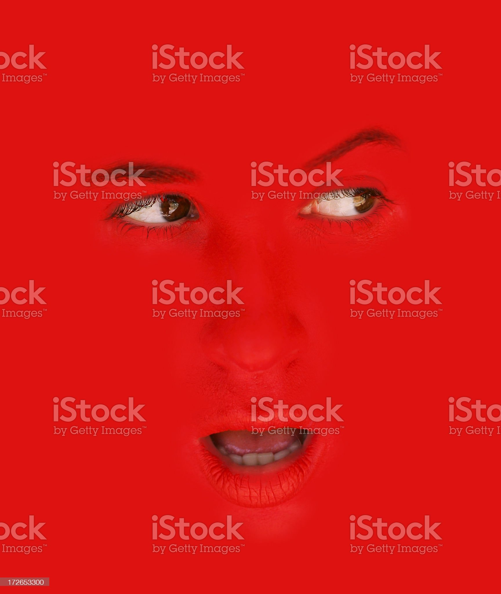 Red Watching royalty-free stock photo