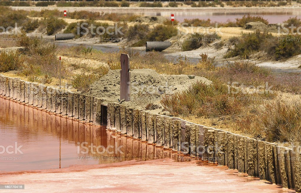 Red water, banks and plants in Aigues-mortes salt basin royalty-free stock photo