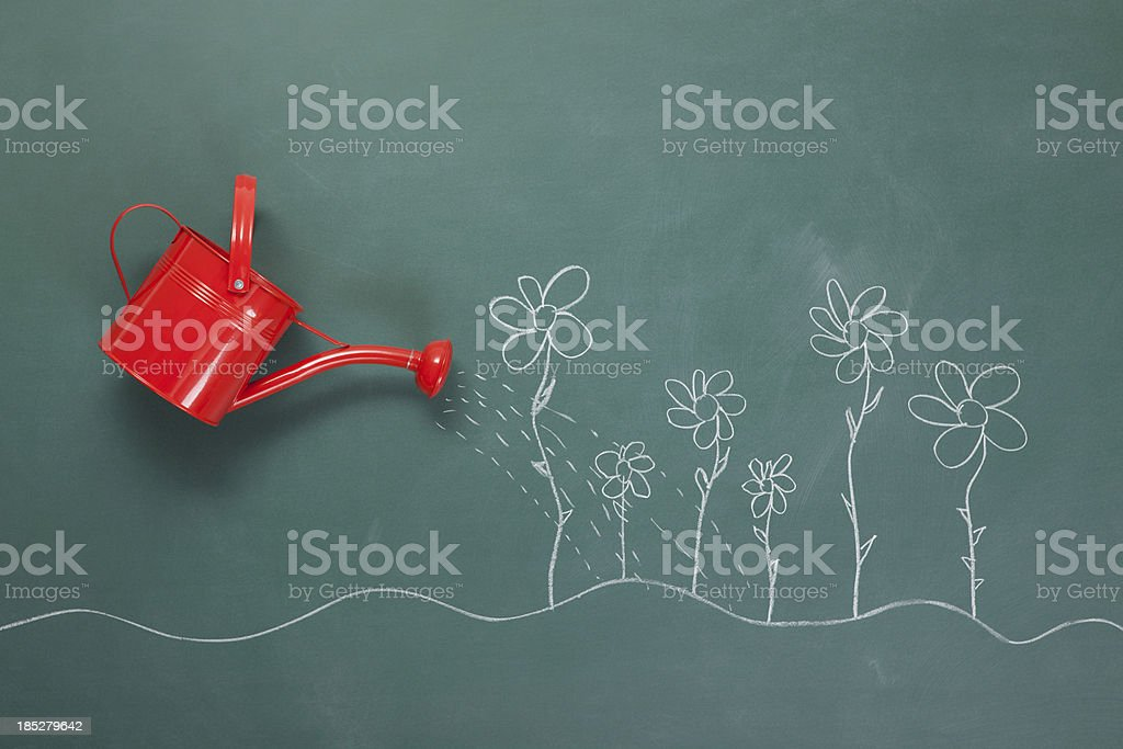 Red Watering Can And Flowers Drawings On Blackboard stock photo