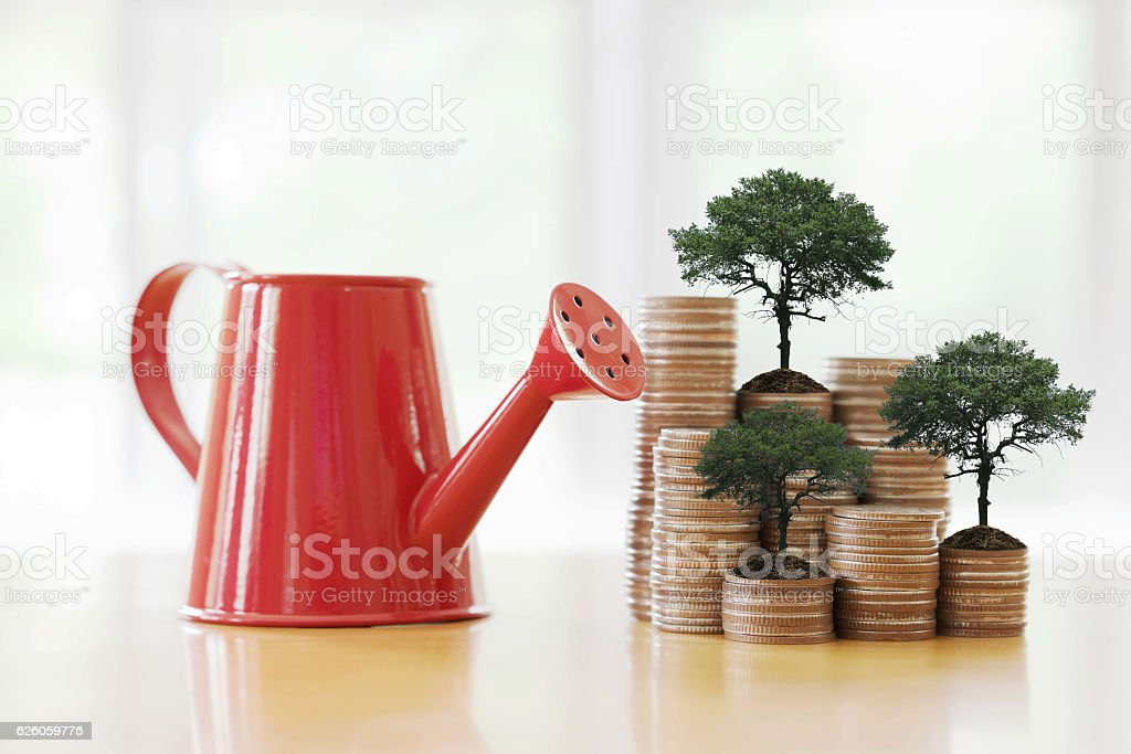 Red watering can with coin (path in side) isolate stock photo
