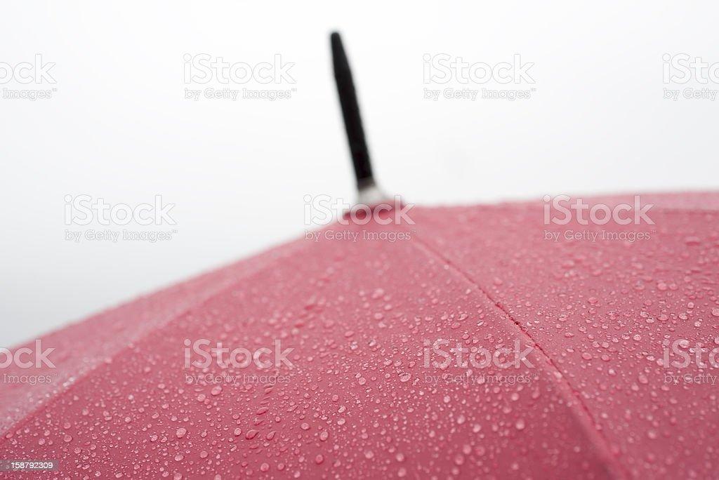 Red wet umbrella royalty-free stock photo