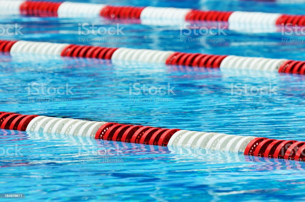 Olympic Swimming Pool Lanes swimming lane marker swimming pool no people white pictures