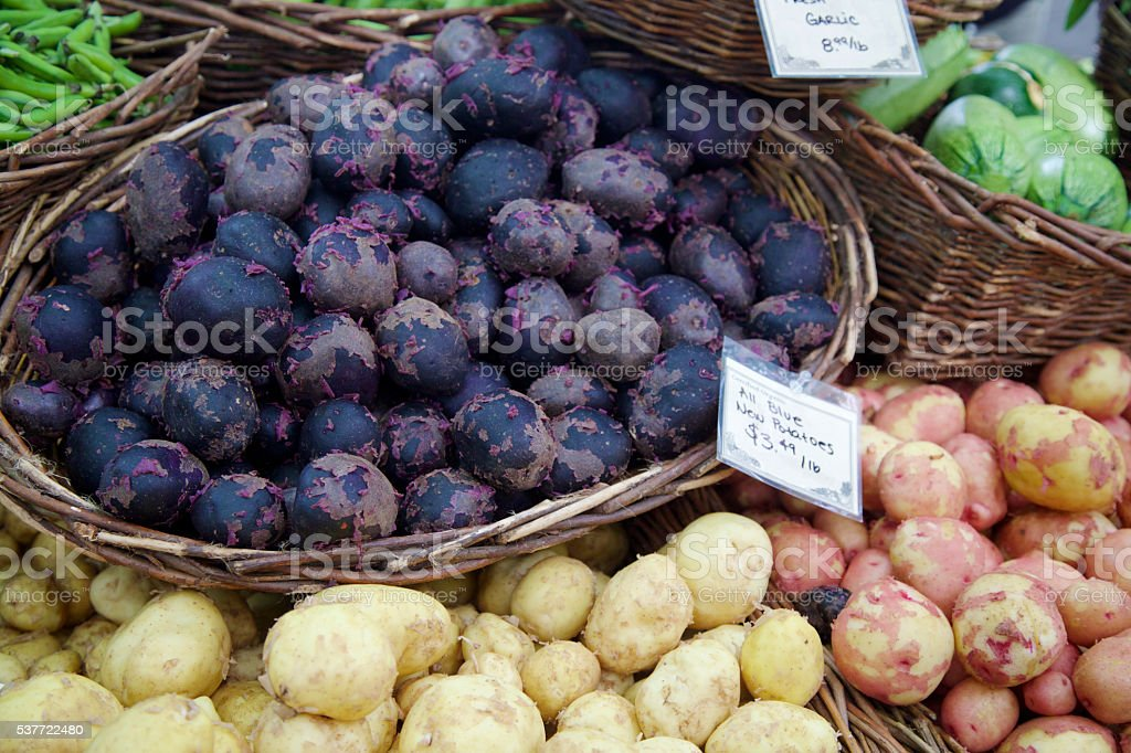 red white and blue potatoes at the farmer's market stock photo