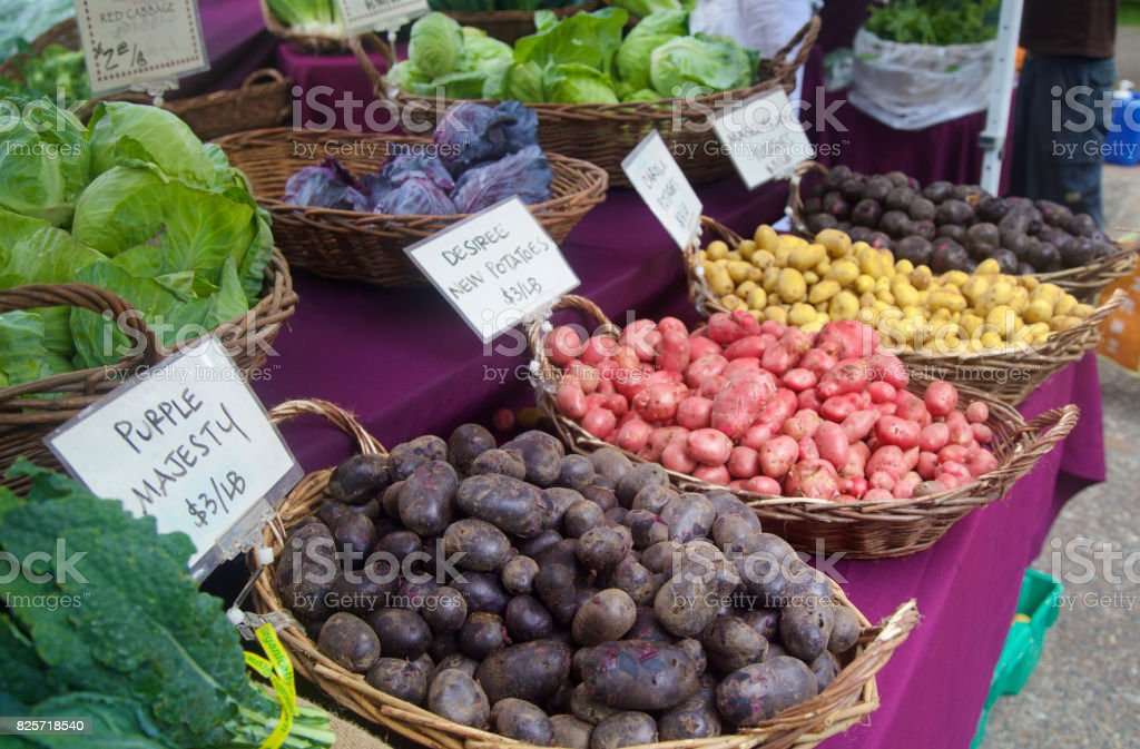 red white and purple potatoes at the farmer's market stock photo