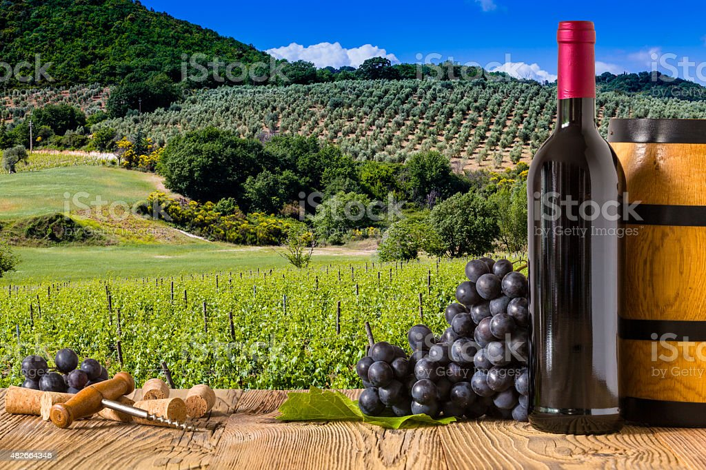 Red wine bottles with grapes on wodden board. Beautiful Tuscany stock photo