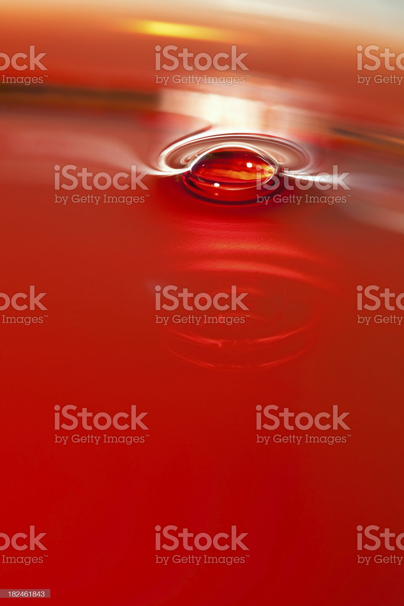 Red Wine Bubble royalty-free stock photo