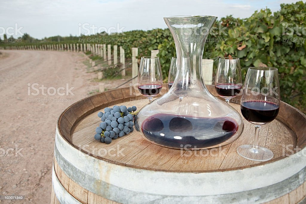 Red wine in vineyard stock photo