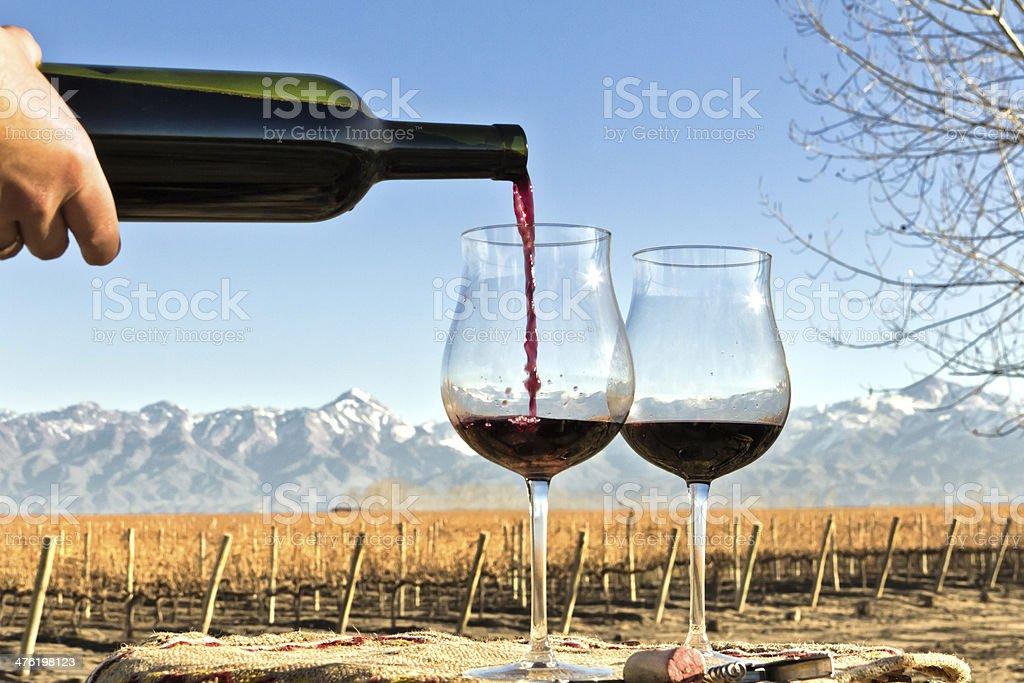Red wine, vineyard and mountain stock photo