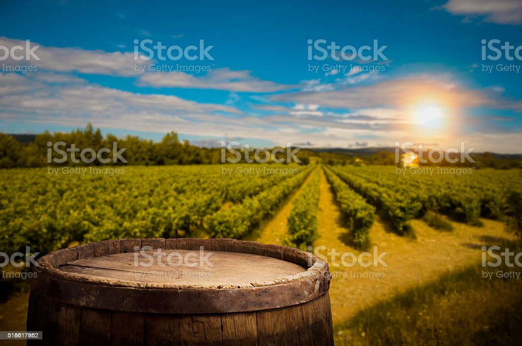 Red wine with barrel on vineyard in green Tuscany, Italy stock photo