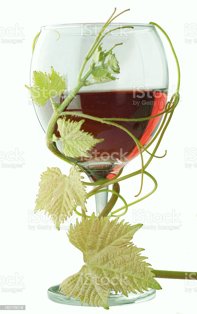 red wine with grape leave royalty-free stock photo