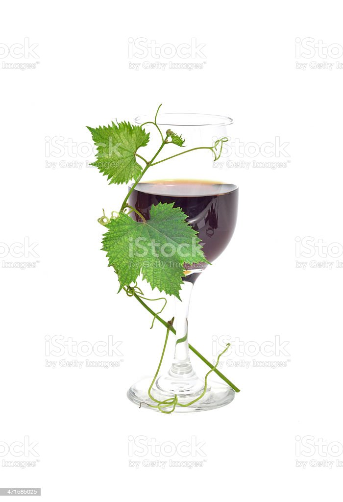Red wine with grape leaves stock photo