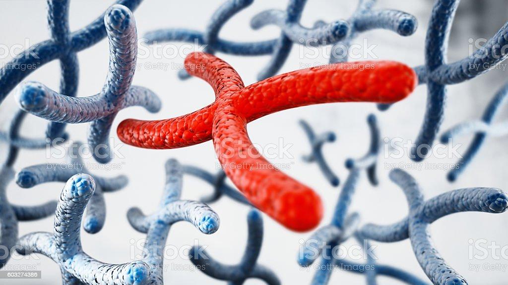Red X chromosome among blue chromosomes stock photo