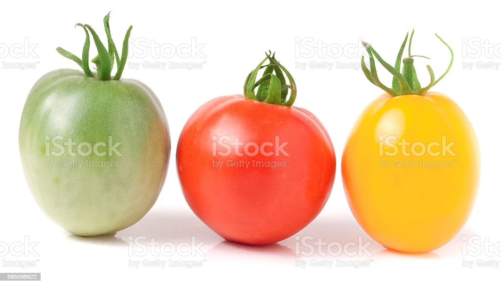 red yellow and green tomatoes isolated on white background stock photo