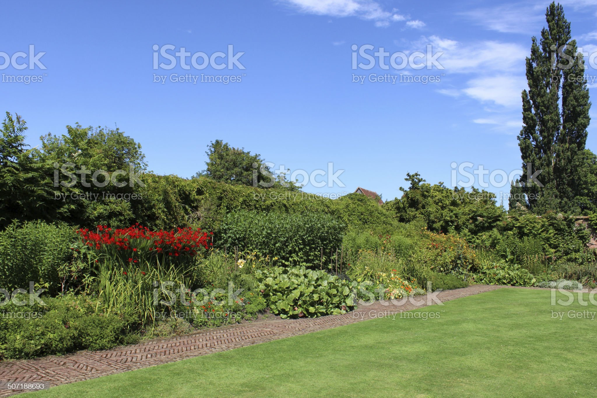 Red-brick path, block-paving, paved pathway image, herbaceous-border, flowers, lawn, lombardy-poplar royalty-free stock photo