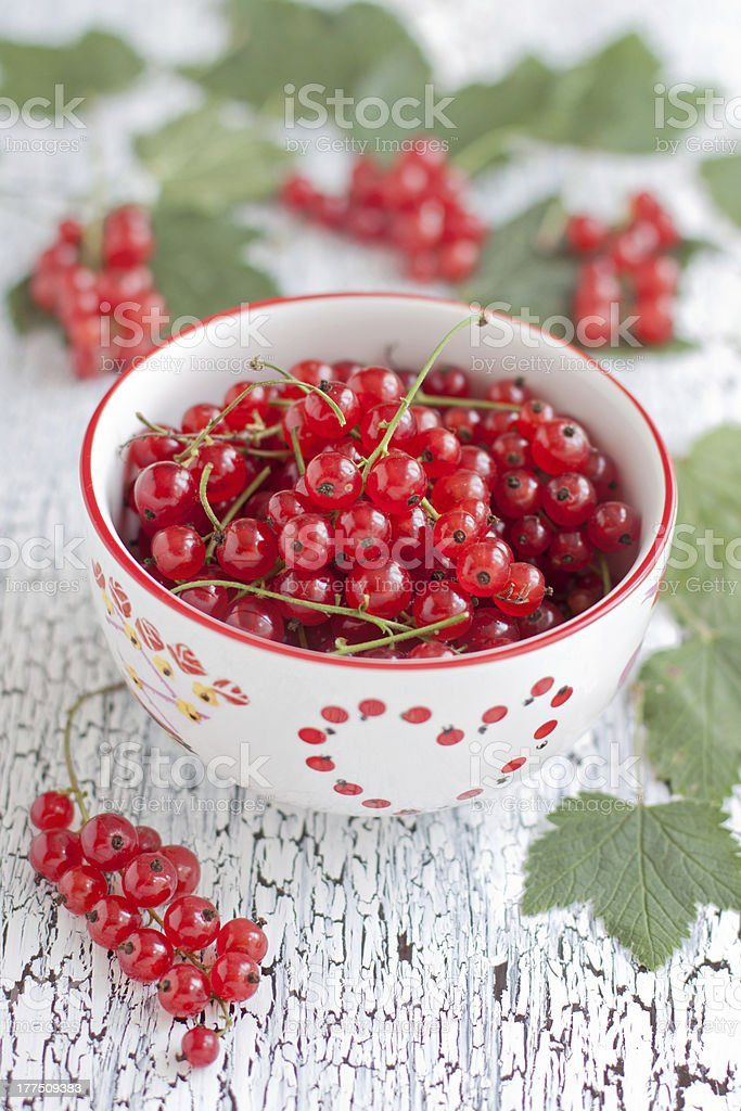 Redcurrant berries royalty-free stock photo