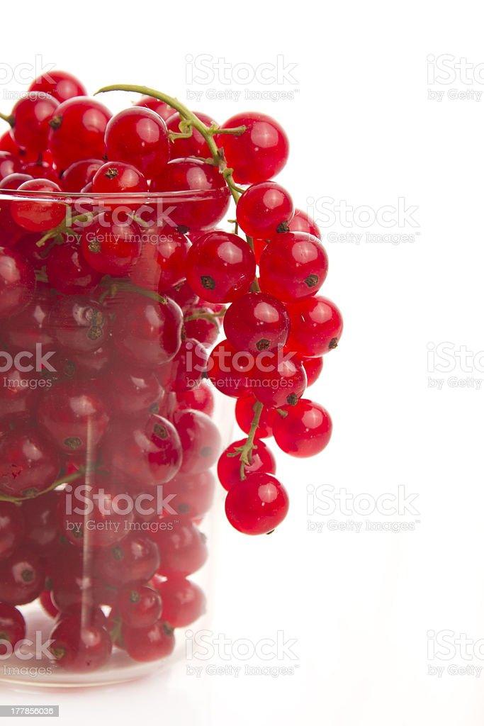 redcurrant royalty-free stock photo