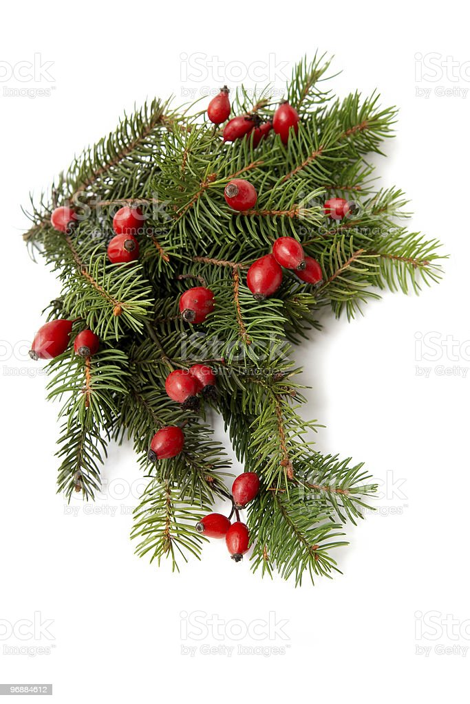 Red-green Christmas arrangement royalty-free stock photo